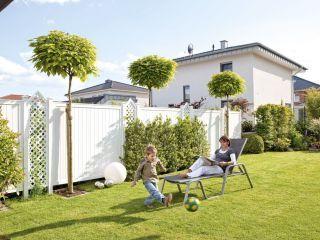gesetzliche erbfolge welche erben wie viel erben. Black Bedroom Furniture Sets. Home Design Ideas