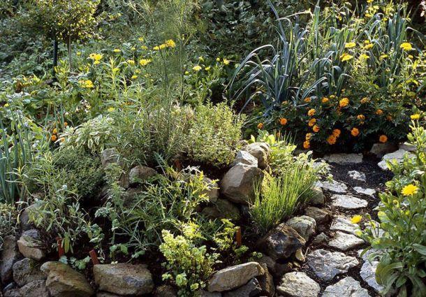 Kräuterbeet Ideen kräutergarten eine duftende oase für beet balkon und terrasse